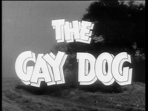 gaydog1954dvd